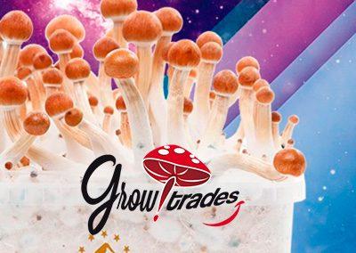GrowTrades